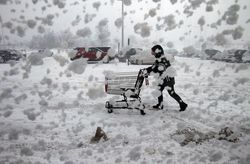 Shopping in a blizzard